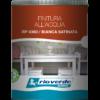 colorificio-artigiani-del-colore-renneritalia-rioverde-finitura-classica-acqua-RP4360