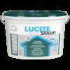 colorificio-artigiani-del-colore-varese-lucite-inside-silicon450